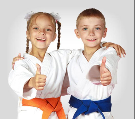 Children Taekwondo Classes 6-12 YRS